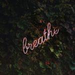 Breath - Photo by Tim Goedhart on Unsplash